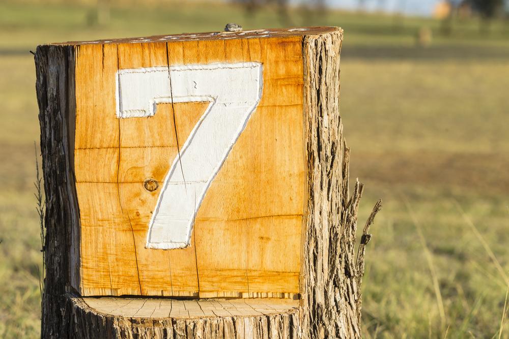 切り株に「7」